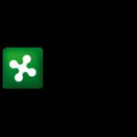 Regione Lombardia Logo Cliente